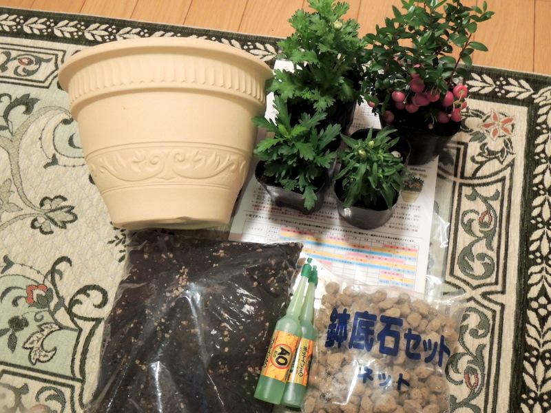 スギ薬局のポイントで、日比谷花壇のガーデニングキットを手に入れた!